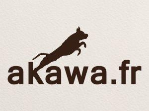 logo-akawa
