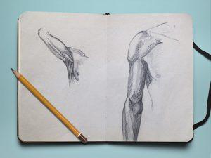 corps-humain-dessin