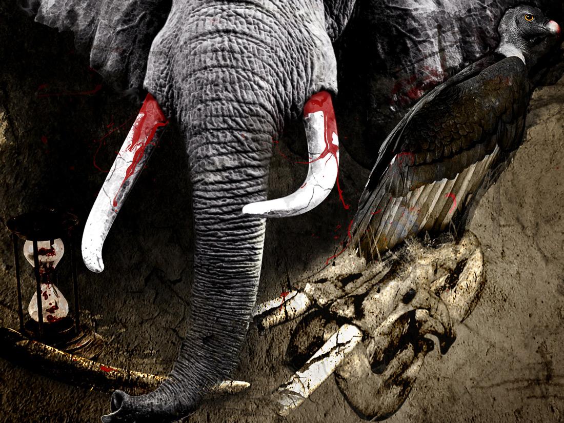 le-dernier-des-elephants-detail